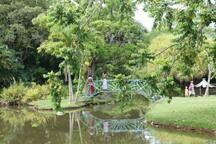 Jardin d'eau de Blonzac