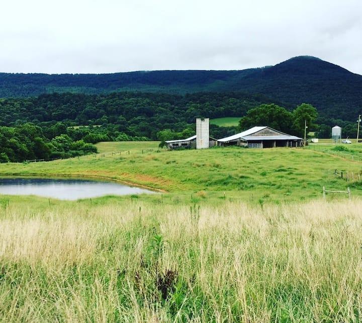 Gorgeous farm house with incredible mountain views