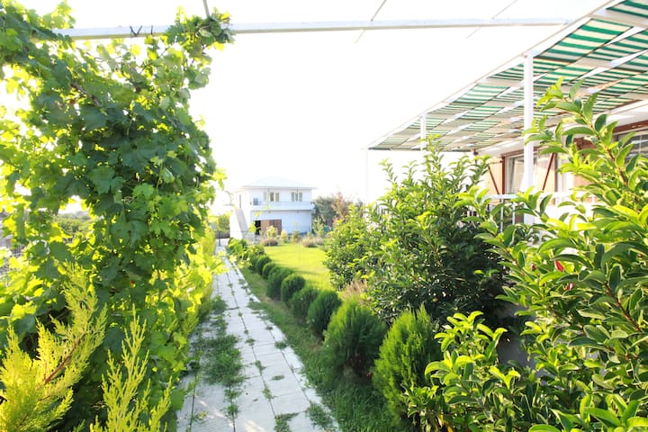 Çanakkale'de manzaralı köy evi/ Village House