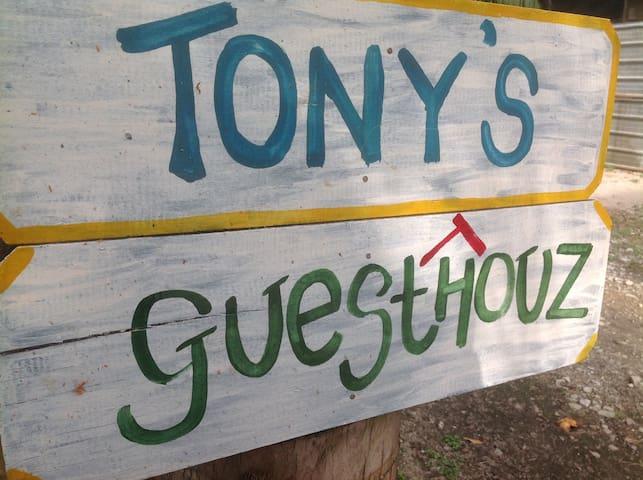 Tony's Guesthouse 1 Singel Bedroom