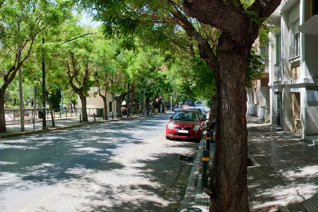 Our street in the Spring is one of the most beautiful in Athens