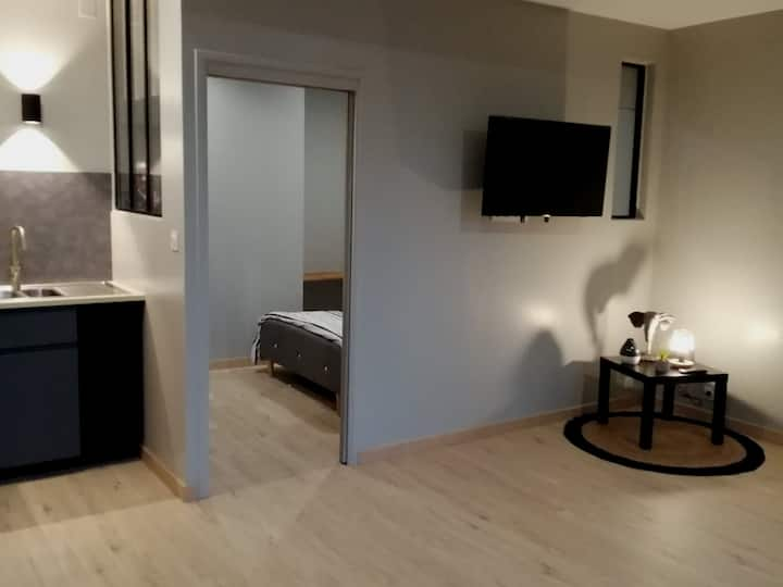 Charmant Appartement T1 Bis rénové Muret Centre