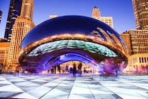 Don't miss the magical night scene of the Chicago Bean in Millennium Park!