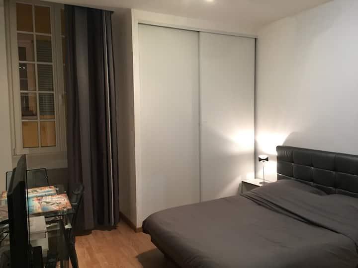 Studio rénové-17 m2-Nice centre.