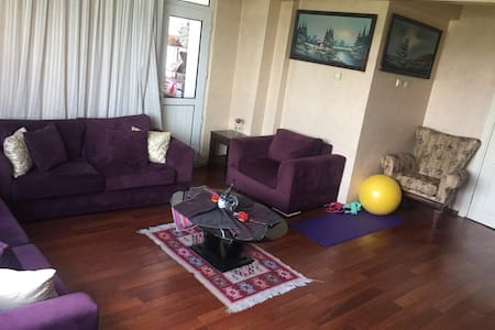 Istanbul city clean apartment - Istanbul