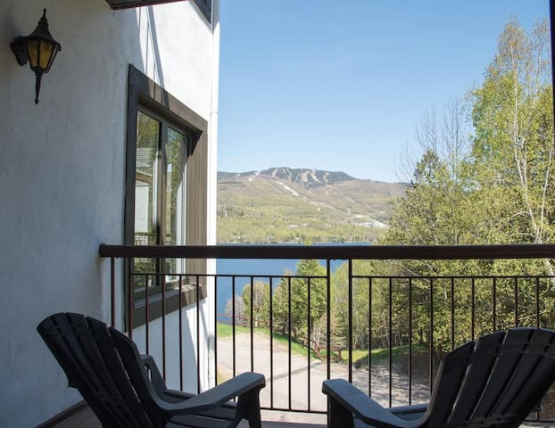 Condo with magnificent view of lake and mountain!