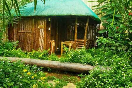 Single detached bamboo hut, Puerto Princesa - Puerto Princesa