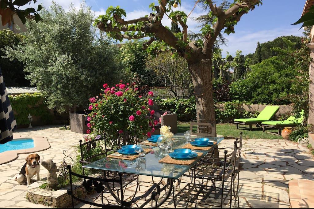 Villa proven ale moderne avec piscine au calme maisons for Maison a louer a marseille avec piscine