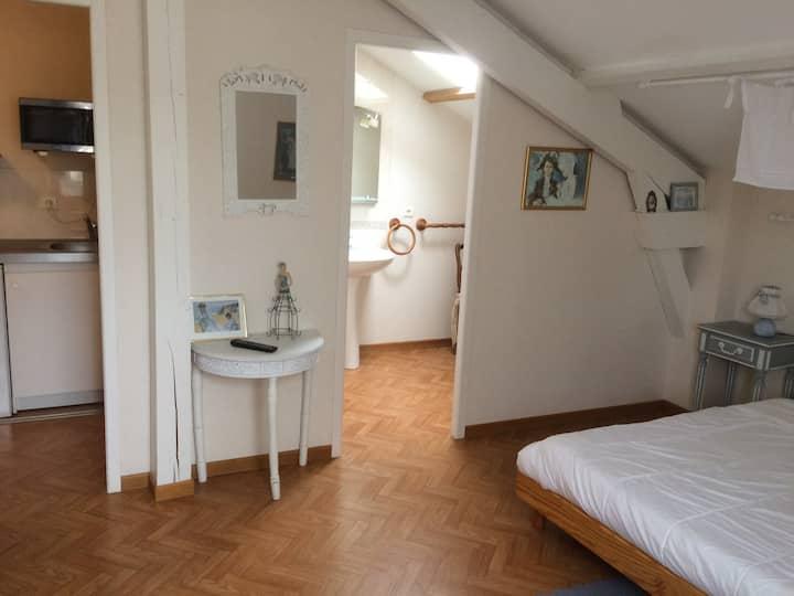 T1 « Baretous » Pau Centre Résidentiel