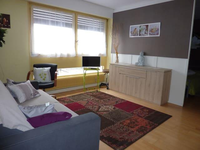 Appartement châleureux proximité gare - Nancy - Lägenhet