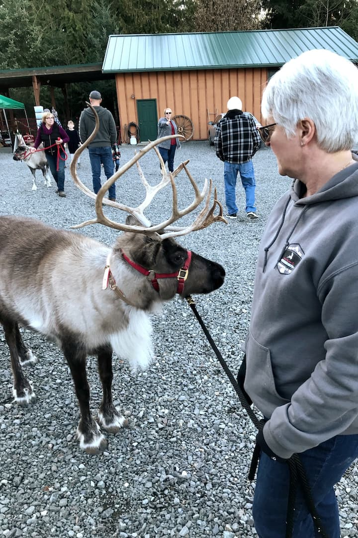 Santa's Reindeer Luv to Meet New Friends