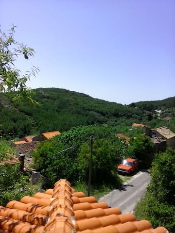 MANUELA APARTMENT - Babino Polje - Wohnung