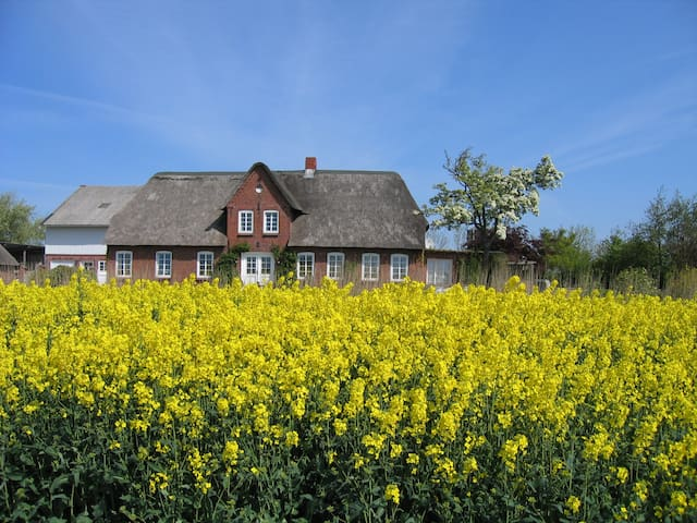Lovely country house by the North Sea - Emmelsbüll-Horsbüll - บ้าน