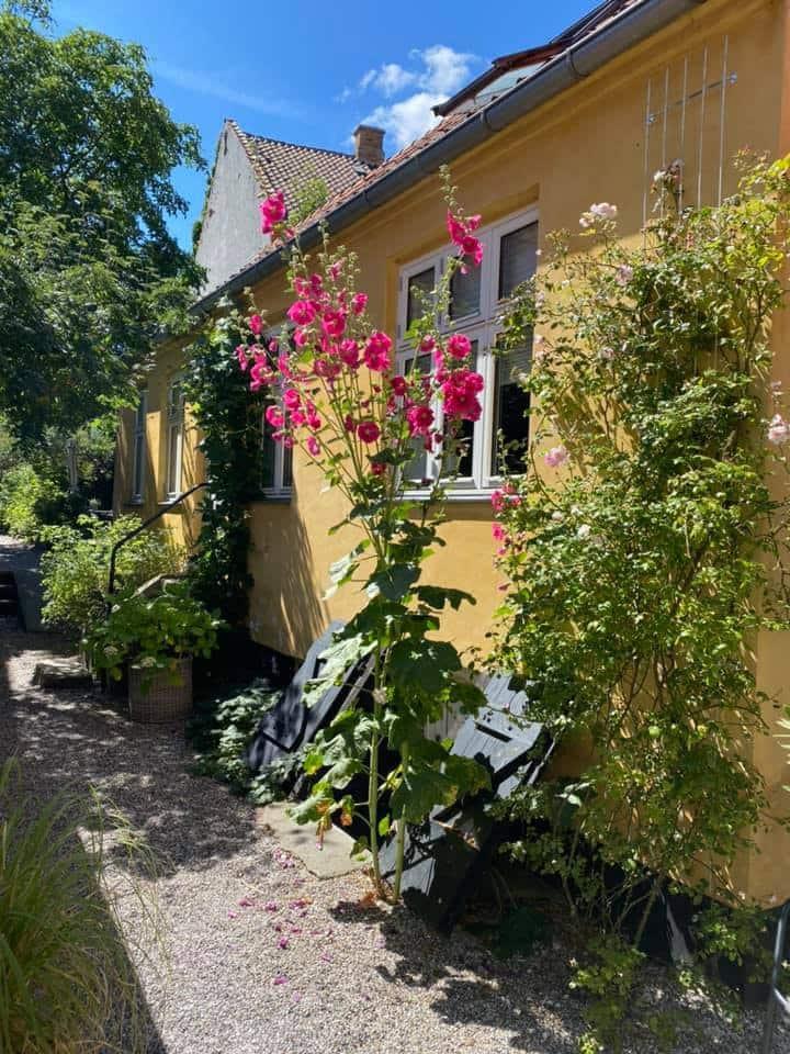 Skønt byhus midt i det gamle Helsingør