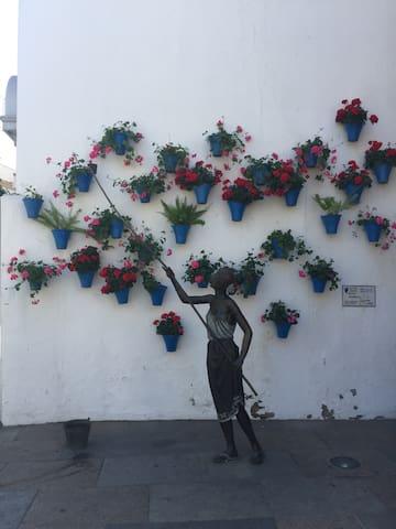 Casco histórico - Plaza de Colón - Cordoba - Appartement