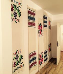 Traditional apartment Baia Mare - Baia Mare - Daire