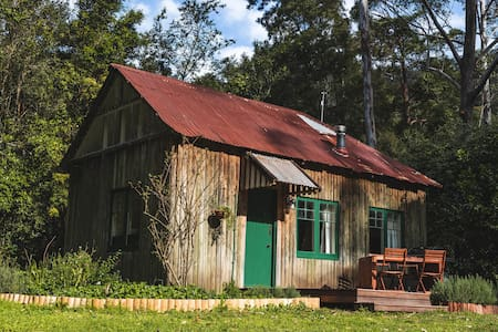 Falls Cottage, in the rainforest at Jamberoo