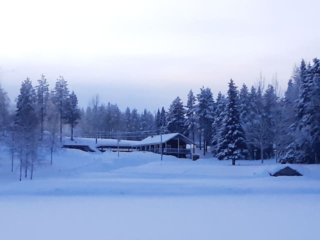 Villa in Lapland with Sauna and reindeers
