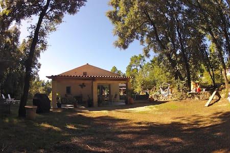 Maison au fond des bois - Montauroux - Rumah