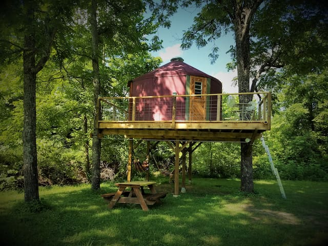 Abi's Arboreal Abode & Hammock Haven (AAAHH...) - Berea - Treehouse