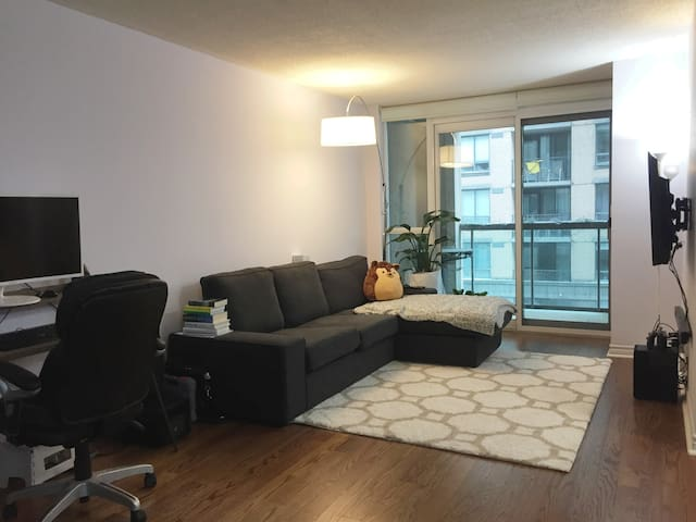 Spacious Unit in the heart of downtown Toronto