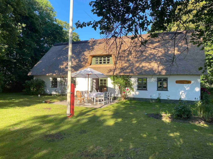 Ro og idyl på landet nær Grenå, 45 min til  Aarhus