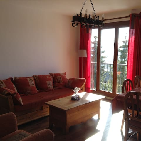 Montagne, spacieux et confortable - Font-Romeu-Odeillo-Via - Apartamento