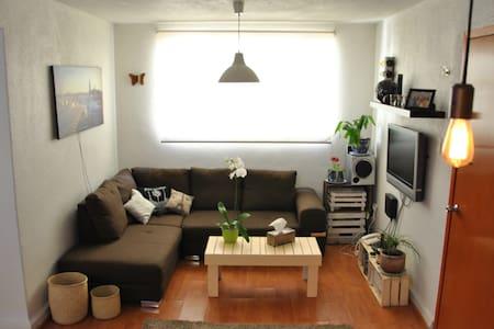 Comfy Sofa in Roma Condesa - Ciudad de México