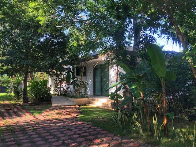 Studio Apartment @Jungle retreat in Puerto Morelos