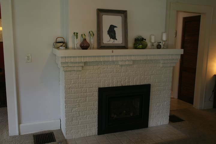 Warm up in front of a cozy fire from our gas insert with the flip of a switch!