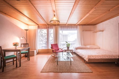 A light, bright studio for 2 in central Wengen - Wengen