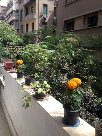 Flowers and plants on the balcony ledge allow you to relax