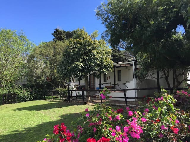 Fig Tree Cottage, Sorgh Vliet Stables, Hout Bay