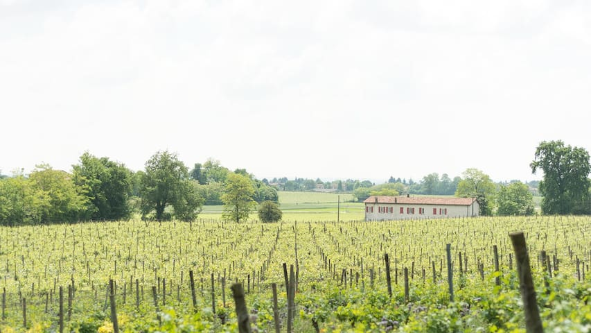 Bed & Breakfast La Cascinetta (2 stanze)