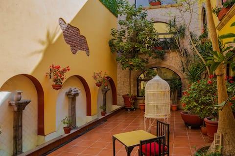 """Habitación privada """"ÁGUILA"""" Centro Histórico"""