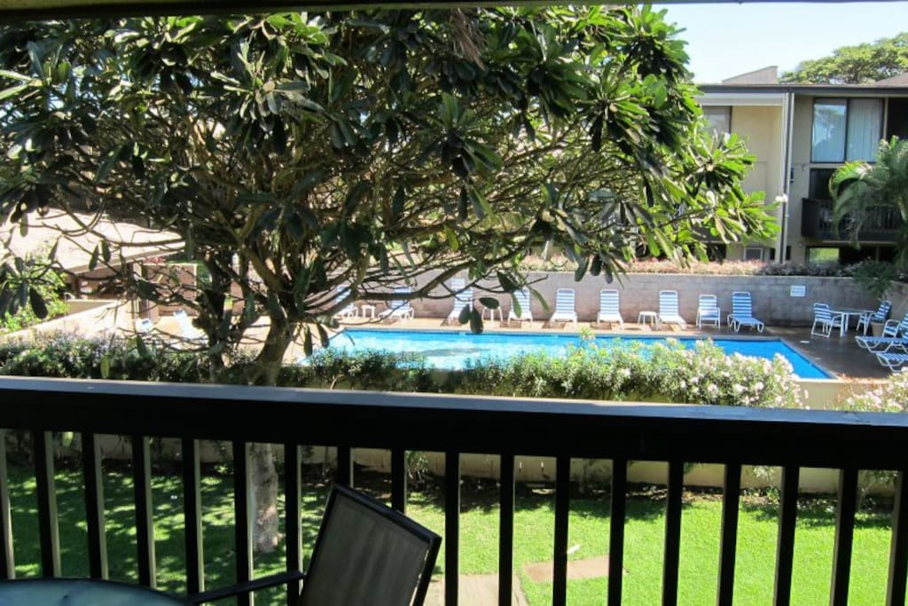 View of pool from the balcony.