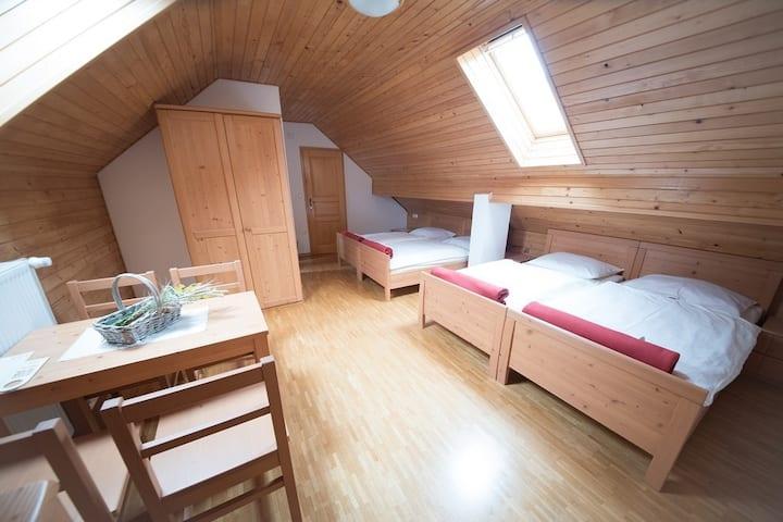 Quadruple Room on the Tourist Farm Pr'Dovar