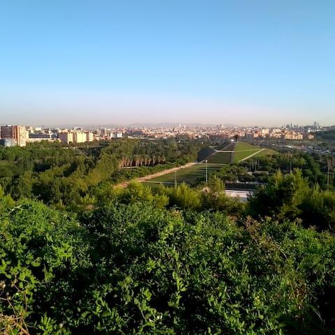 Habitación / Parque del Manzanares / Madrid