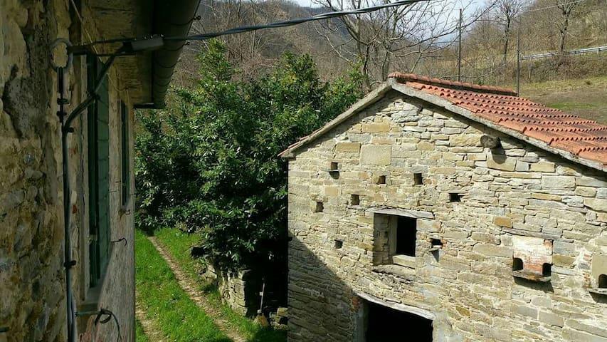 Antica Villa immersa nel verde, su fiume Lamone
