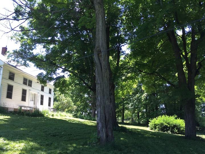 Treehaven: circa 1825 farm house