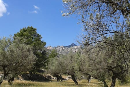 Finca La Escapada - on the edge of Els Ports - Tortosa - 独立屋