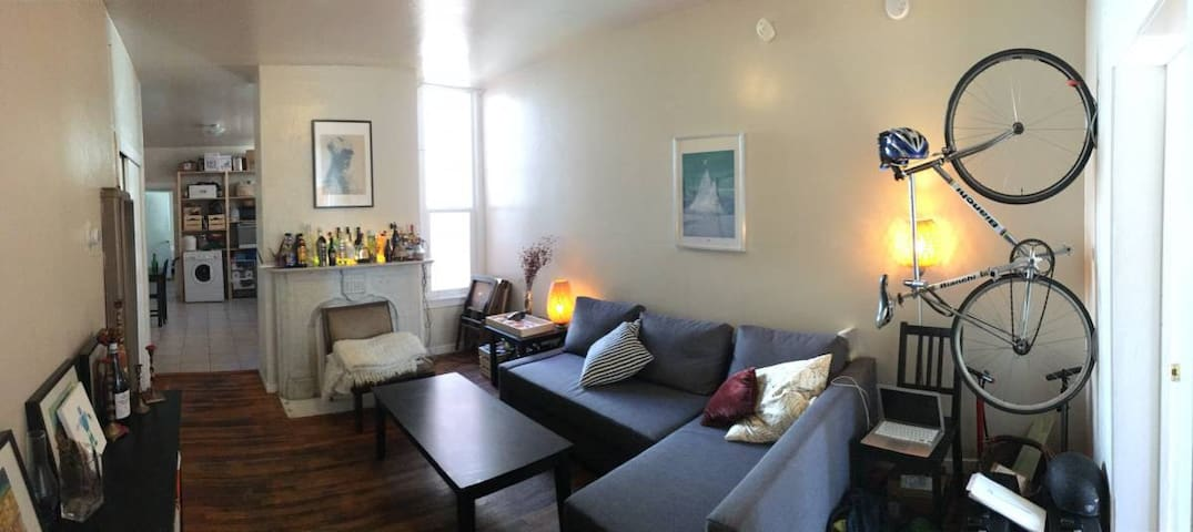 large 1-bedroom apartment in The Mission