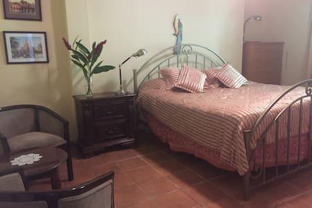 Cozy Villa, King Sized Room, Alto Lino Boquete - Los Naranjos