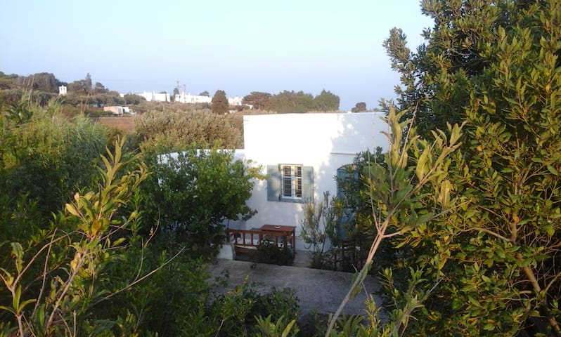 Dafni House - Ano Petali Sifnos