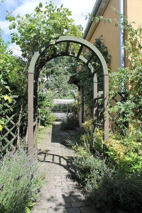 Enclosed cosy garden