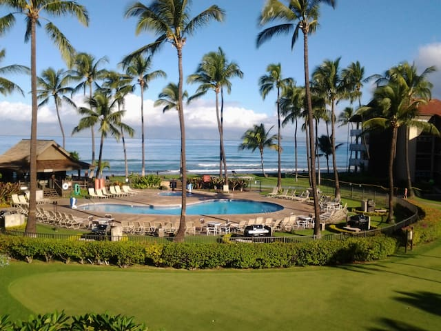 1 bedroom ocean view apartment on the ocean - Lahaina - Appartement