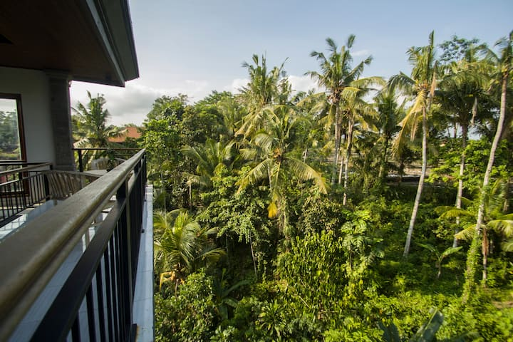 3rd floor with jungle view/Akusara Guest House