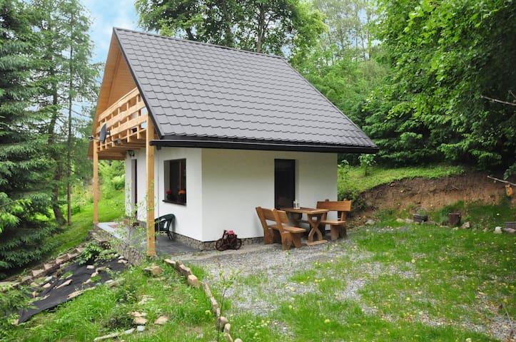 Chatka Pod Trohańcem - Dwernik - Chalet