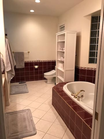 Master Bathroom. Comes with large shower and a separate spacious soaker tub.
