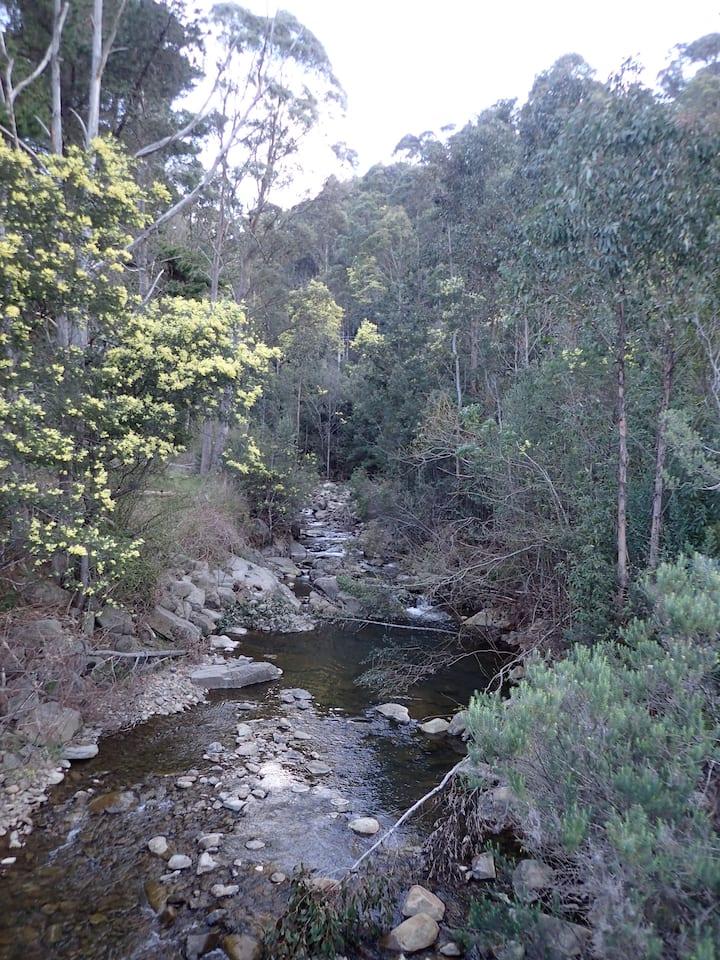 Sorell Creek